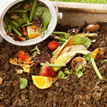 La Palma Orgánica,  gestion basura orgánica y elaboracion compost.