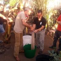 taller compost argual, la palma organica
